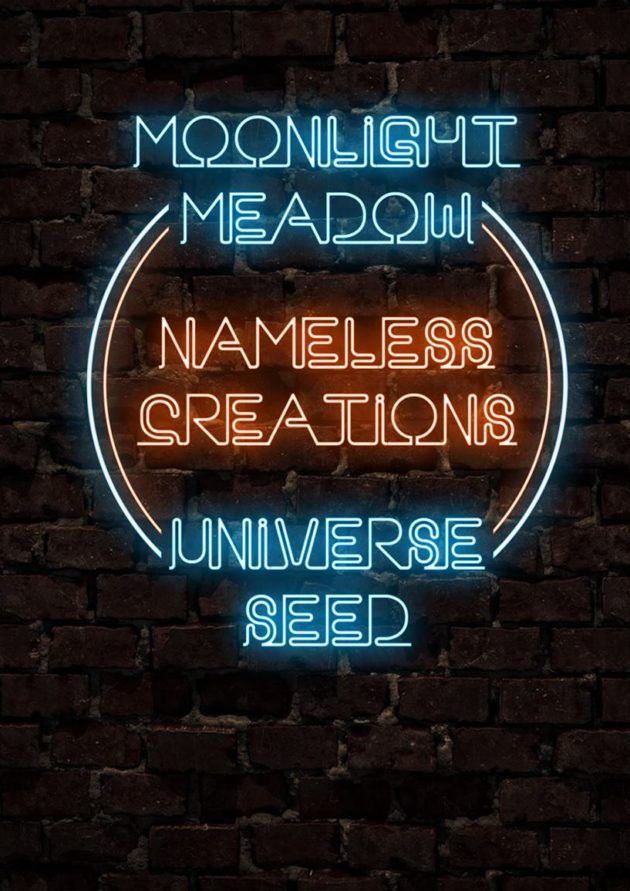 10.08 Moonlight Meadow / Nameless Creations / Universe Seed -Gig